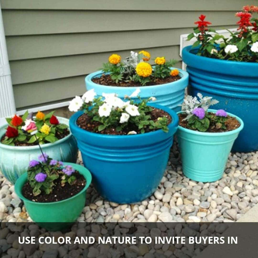 Use color and nature to invite buyers in