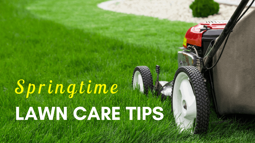 Springtime Lawn Care Tips