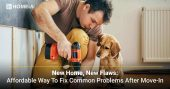 New Home, New Flaws: Affordable Way to Fix Common Problems After Move-In