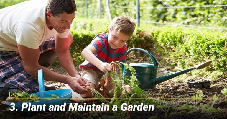 Plant and Maintain a Garden, stay busy with your garden