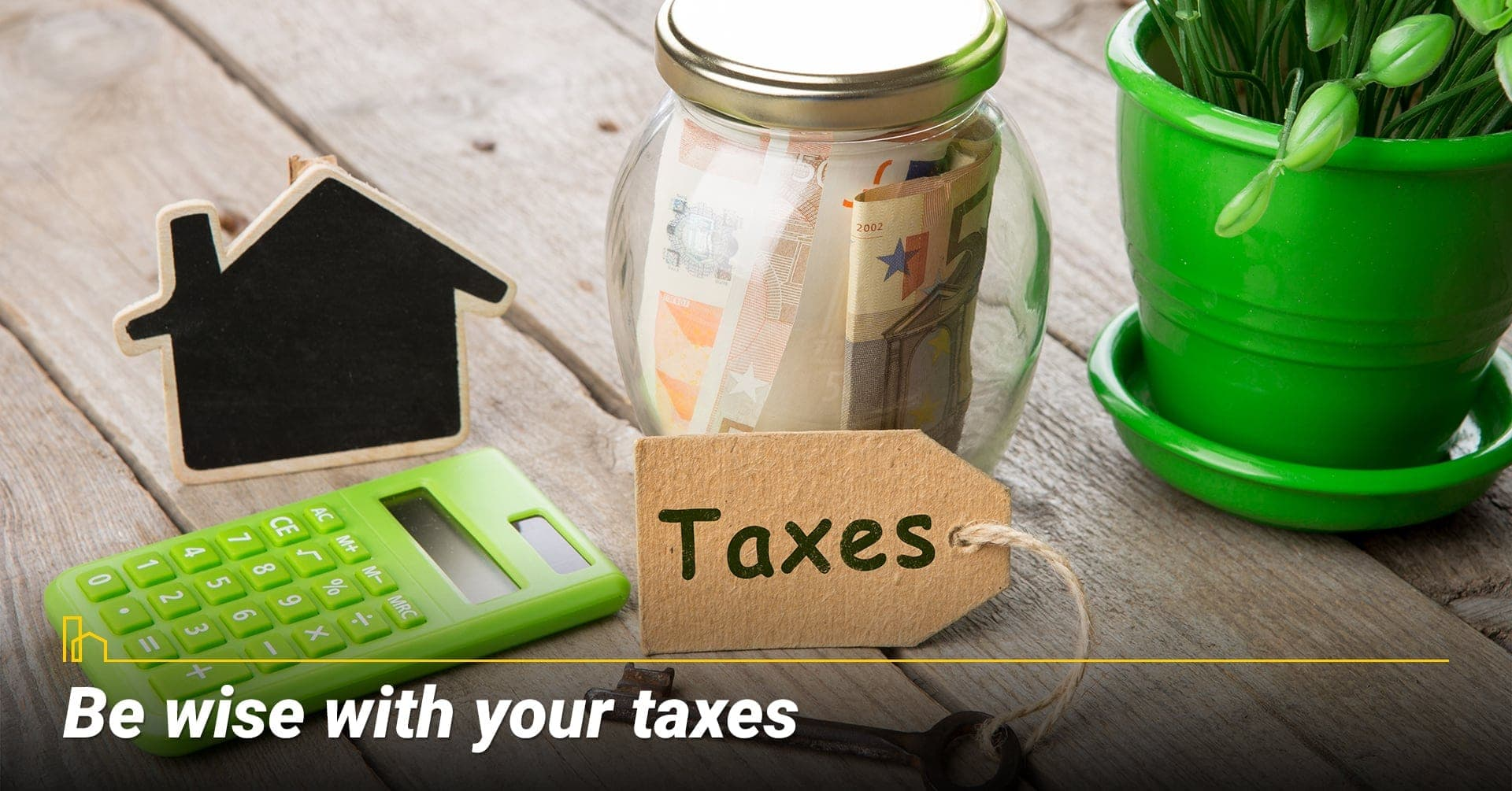 Be wise with your taxes, use tax advisor