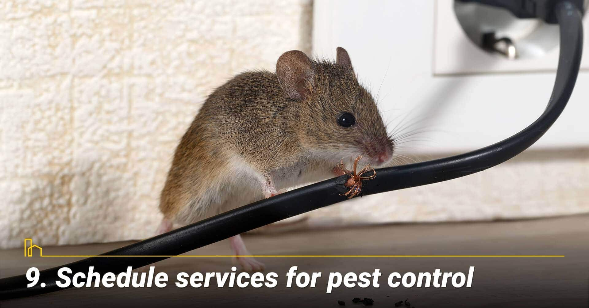Schedule services for pest control