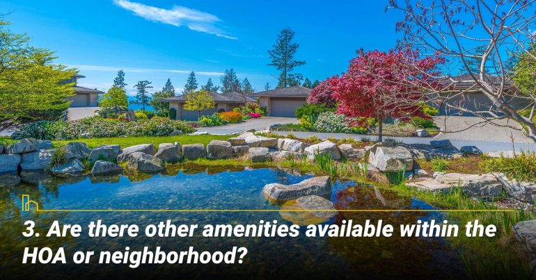 Are there other amenities available within the HOA or neighborhood? Look for other amenities in the neighborhood
