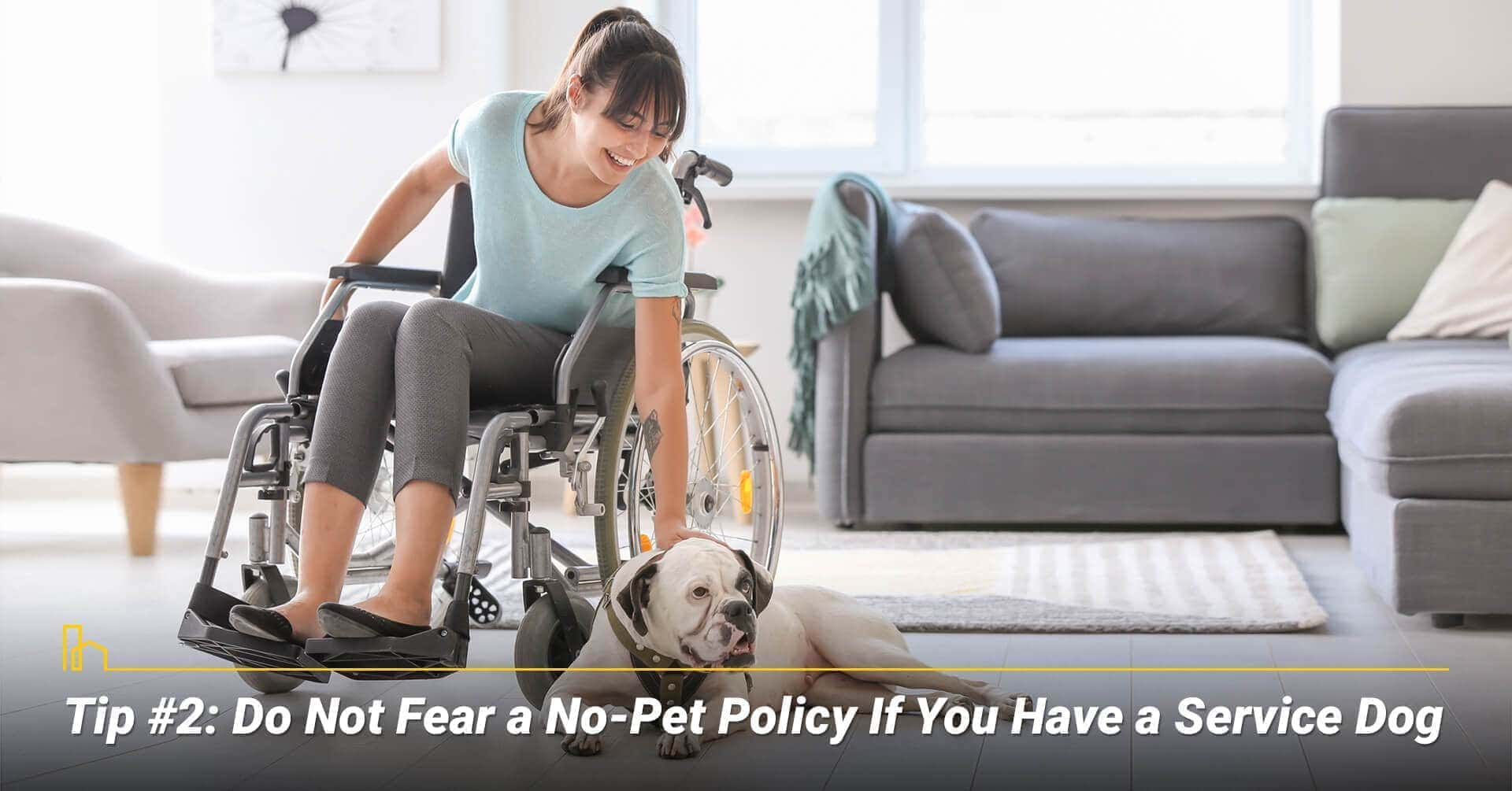 Tip #2: Do Not Fear a No-Pet Policy If You Have a Service Dog, can have service animals