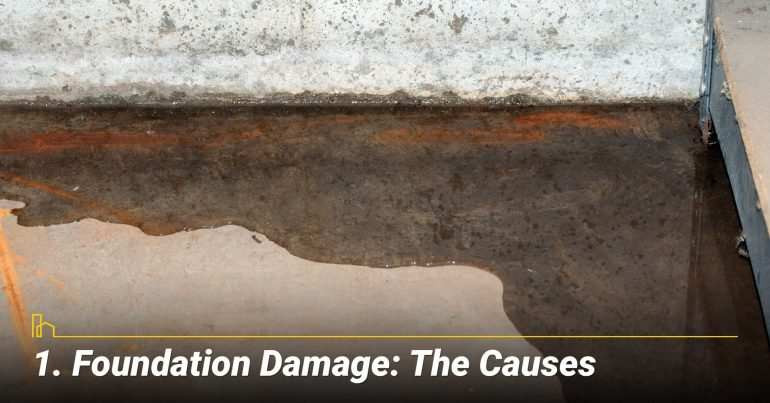 Foundation Damage: The Causes