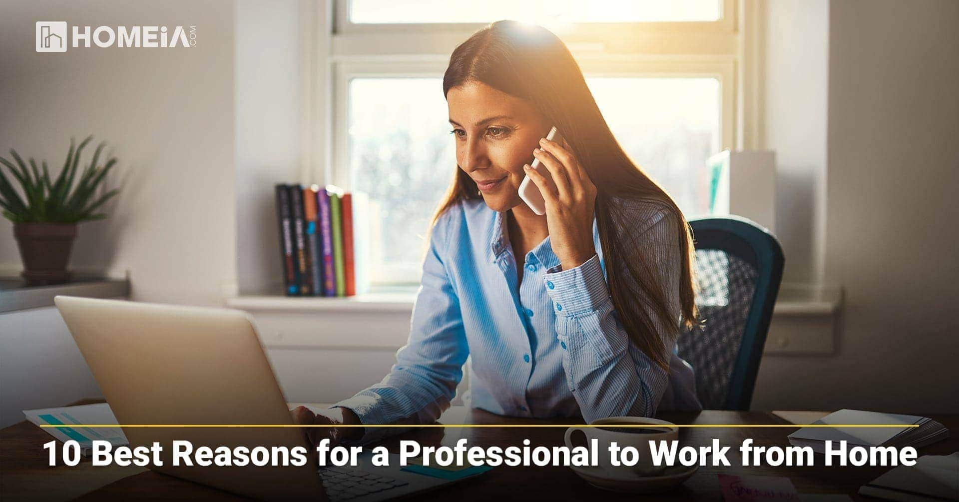 10 Best Reasons for a Professional to Work from Home