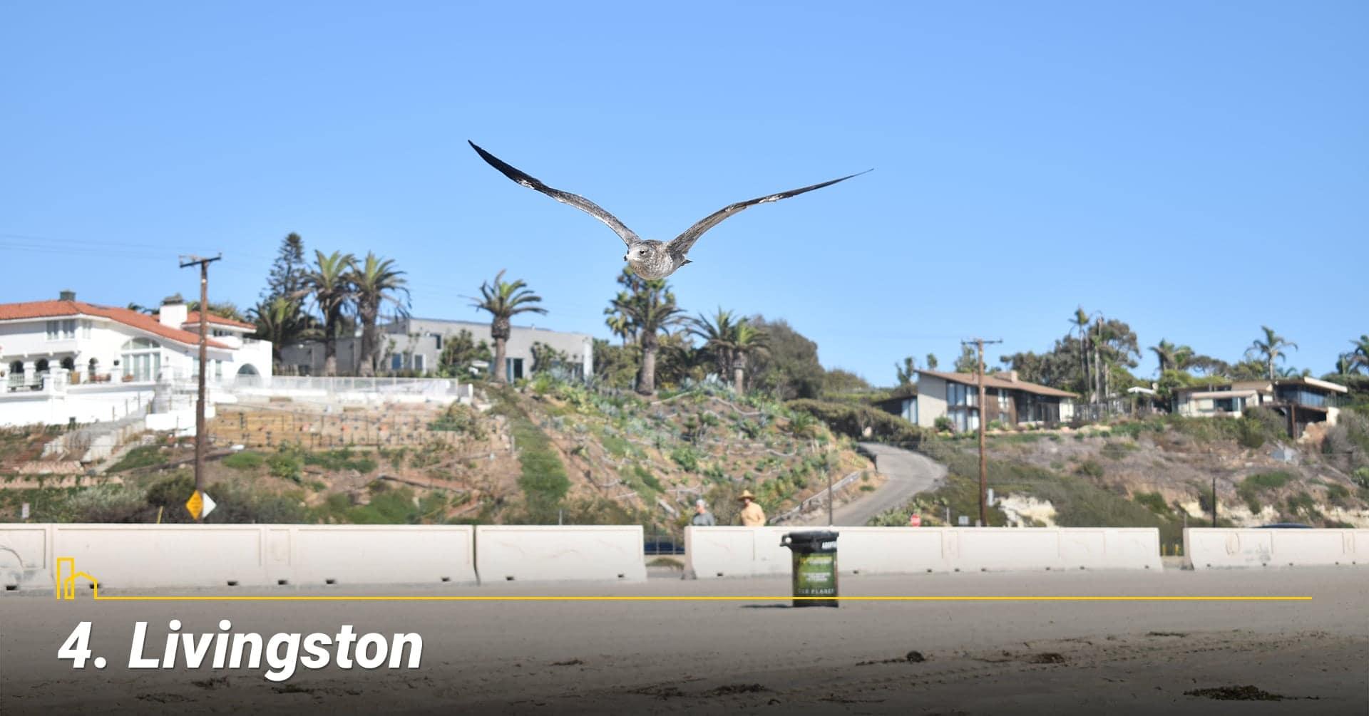 Livingston, California
