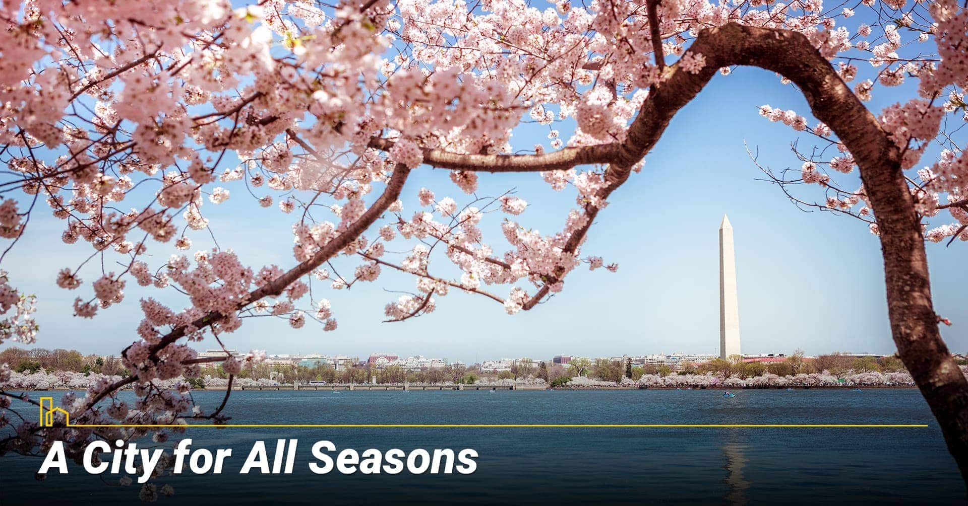 A City for All Seasons in Washington, DC