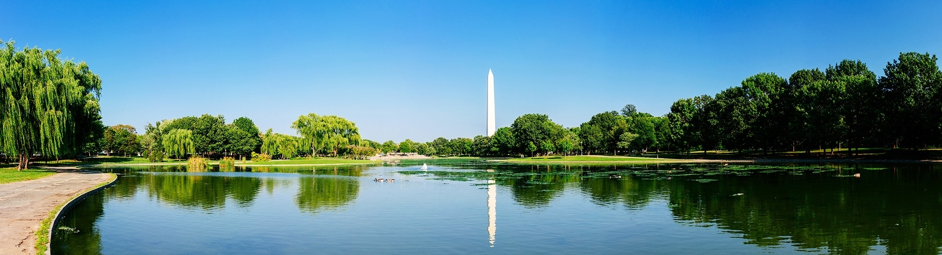 12 Key Factors To Consider Before Living in Washington DC