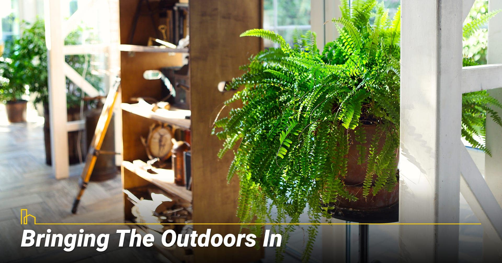 Bringing The Outdoors In, add some plants