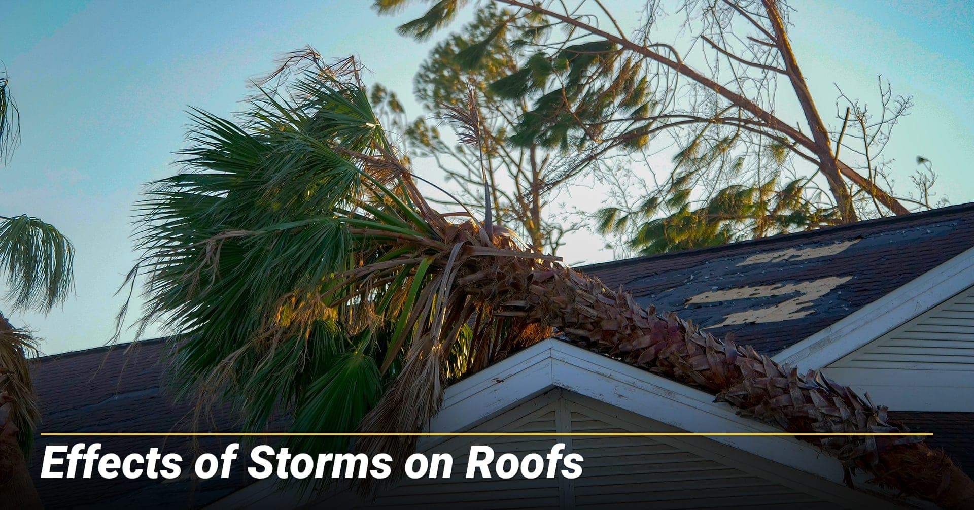 Effects of Storms on Roofs, storm can cause damage to your roof