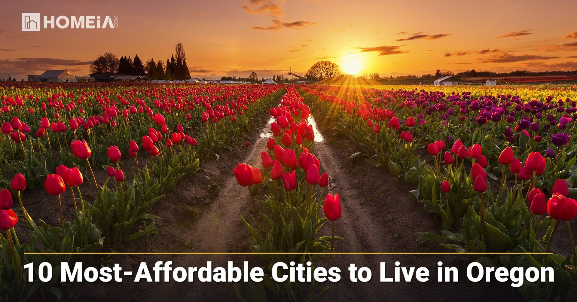 10 Best and Most Affordable Places to Live in Oregon