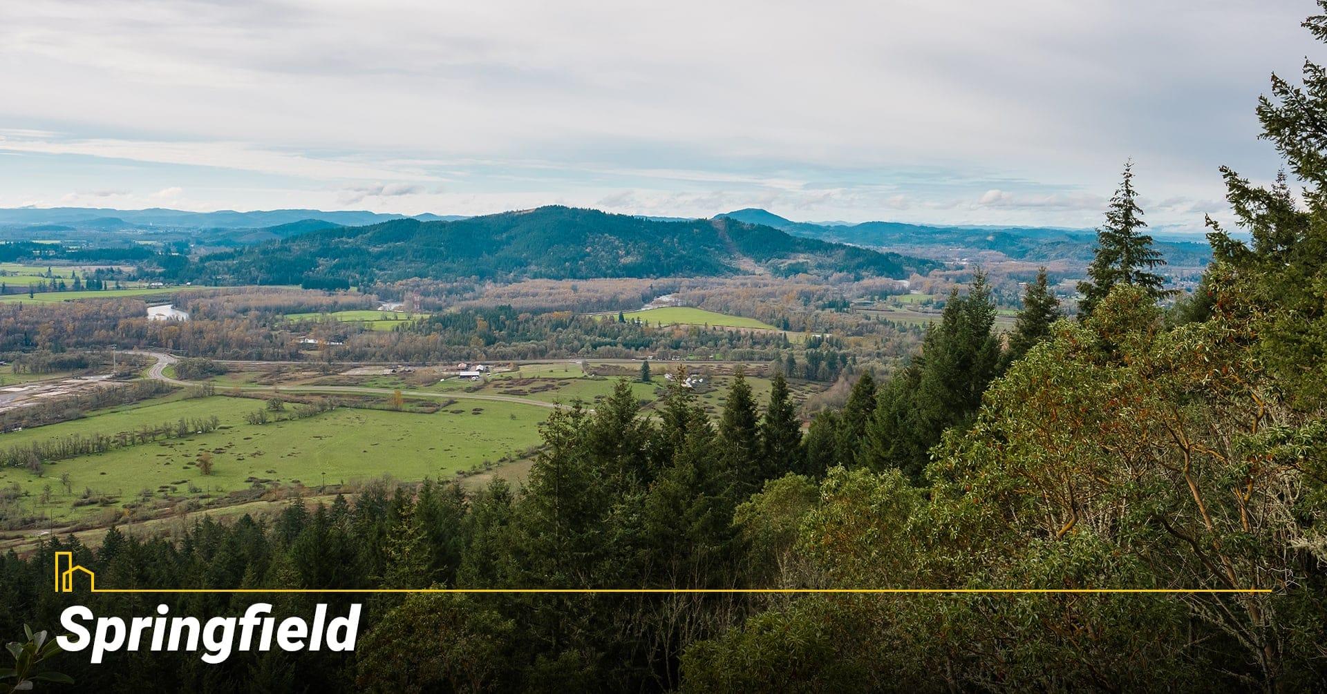 Springfield city in Oregon