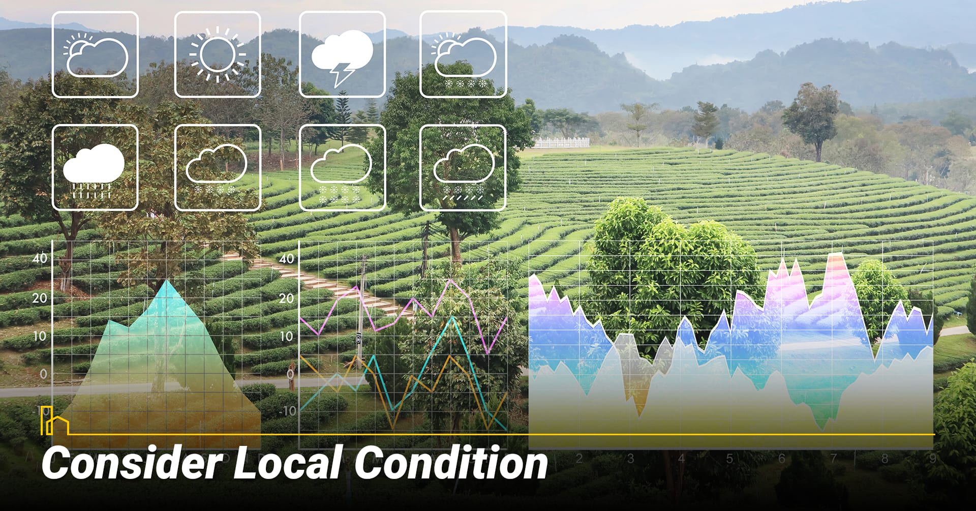 Consider Local Conditions, consider local weather