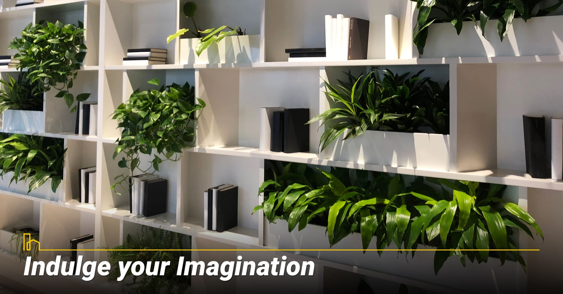 Indulge your Imagination, be creative with your green