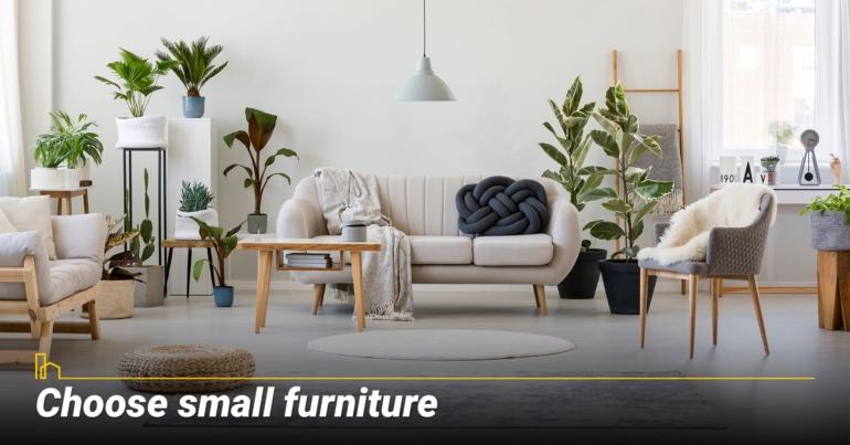 Choose small furniture