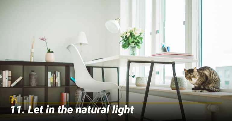 Let in the natural light