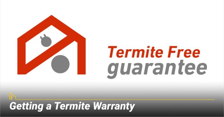 Getting a Termite Warranty