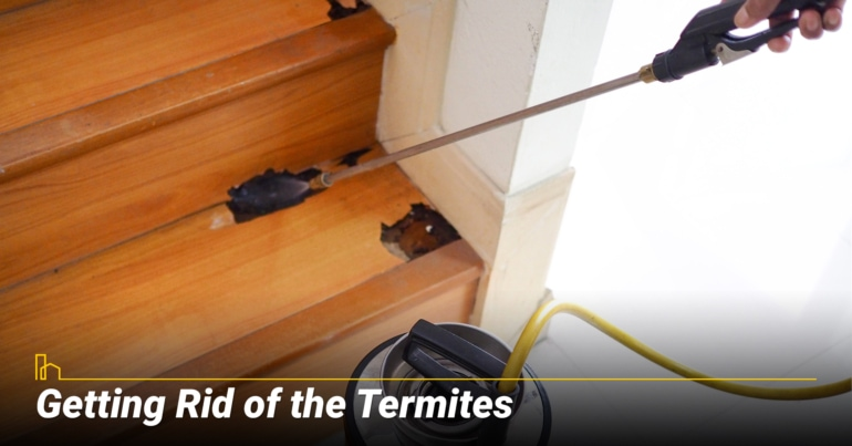 Getting Rid of the Termites