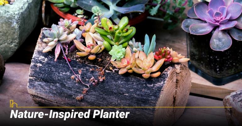 Nature-Inspired Planter