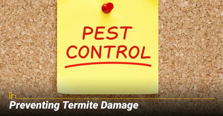 Preventing Termite Damage