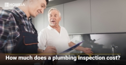 How much does a plumbing inspection cost?